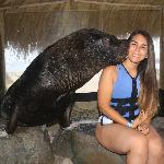 Blogger  Andrea Lastra - Publico mi vida en general.