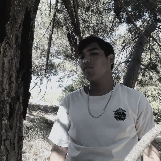 Blogger   Javier Sandoval - redes sociales